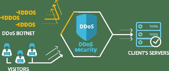 DDoS scema
